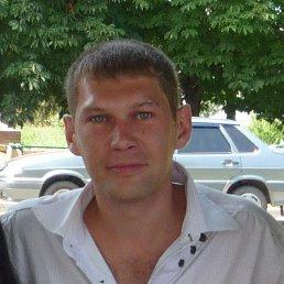 Стас, 39 лет, Брюховецкая
