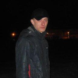 Диман, 28 лет, Михайлов