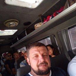 Сергей, 44 года, Грязи