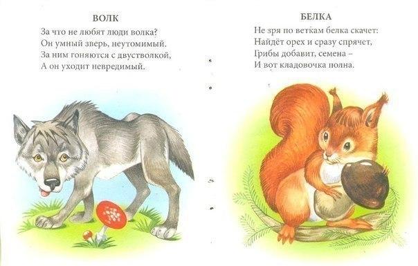 картинки диких животных и стихи такой мастью нее
