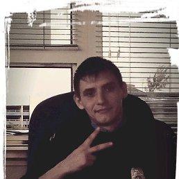Артем, 30 лет, Богородицк