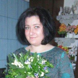 Ира, 25 лет, Житомир