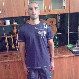 Сергей, 29 лет, Ковель