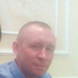 Алексей, 36 лет, Алнаши