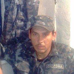 Александр, 37 лет, Градижск