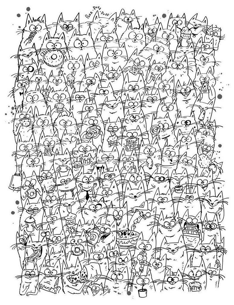 сколько котят на картинке ответ назван так был