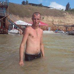 Алексей, 32 года, Миргород