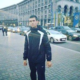 Дима, 24 года, Северодонецк