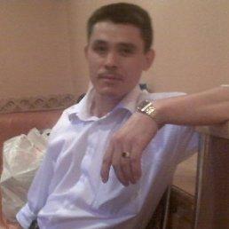 Александр, 39 лет, Плавск