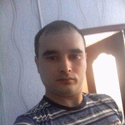 Айнур, 29 лет, Казань