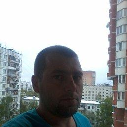 Сергей, 31 год, Путивль