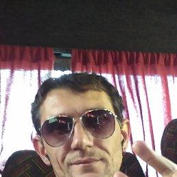 Владимир, 41 год, Берислав