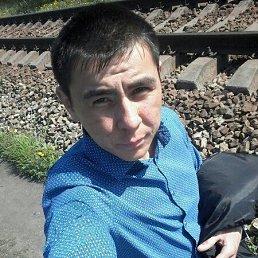 Альберт, 25 лет, Каменское