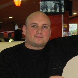 Николай, 37 лет, Васильевка