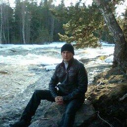 Игорь, 35 лет, Гдов