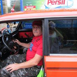 Анатолий Кравец, 61 год, Александрия