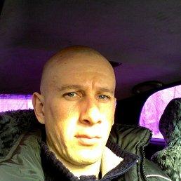 Алексей, 38 лет, Шипуново
