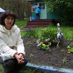 Эльвира, 44 года, Тюмень