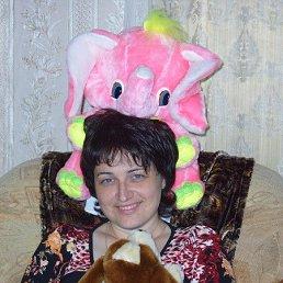 Дина, 44 года, Удомля