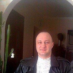 виталий, 44 года, Верхнеднепровск