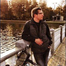 Александр, 34 года, Балашиха