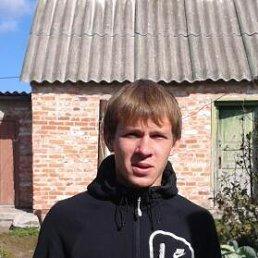 Евгений, 28 лет, Шебекино