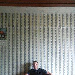 Евгений, 33 года, Электросталь