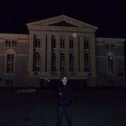 Алексей, 30 лет, Томилино