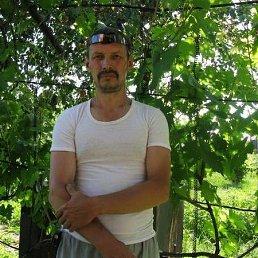 Юрий Володин, 59 лет, Енакиево