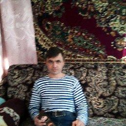 Андрей, 45 лет, Мостовской