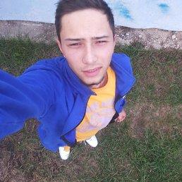 Саша, 23 года, Фастов