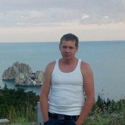 Владимир, 37 лет, Велиж