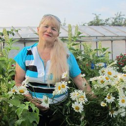 Галина, 61 год, Торжок