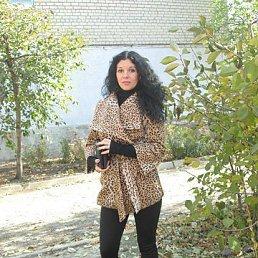 Жанна, 20 лет, Молодогвардейск