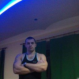 Владимир, 29 лет, Серпухов