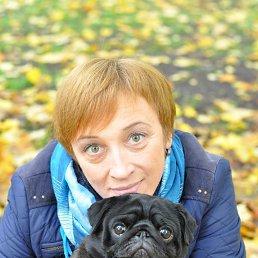 Елена, 44 года, Приозерск