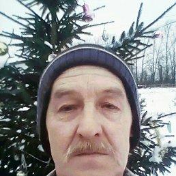 Николай, 60 лет, Лотошино