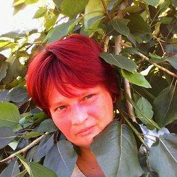 Нина, 43 года, Томск