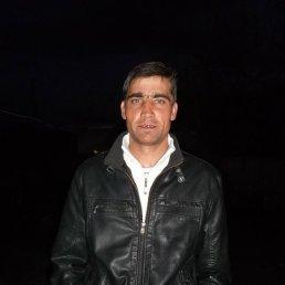 Віктор, 36 лет, Катеринополь