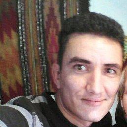 Роман, 36 лет, Самбор