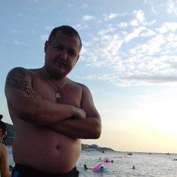 Александр, 28 лет, Кострома