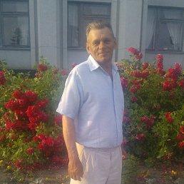 Михаил, 60 лет, Бердичев
