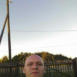 Дмитрий, 29 лет, Черноголовка