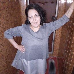 Елена, 29 лет, Губкин