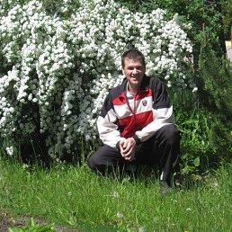 Иван, 40 лет, Новокуйбышевск