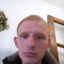 Николай, 30 лет, Платнировская