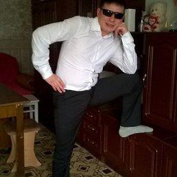 Руслан, 27 лет, Каменск-Уральский