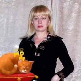 Фото Людмила, Могилёв, 53 года - добавлено 16 декабря 2017
