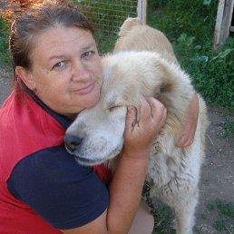 Тома, 54 года, Ильичевск