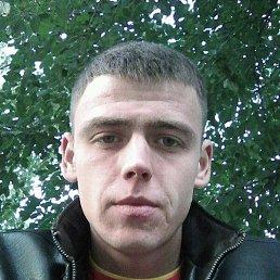 Серый, 26 лет, Немиров